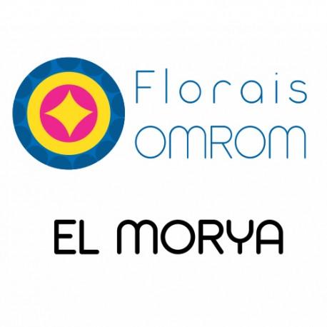 FLORAL EL MORYA
